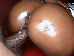 Wild cock sucking for spruce white stud